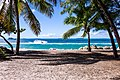 Sea boat framed by palm trees (Unsplash).jpg