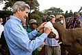 Secretary Kerry Feeds a Baby Elephant at the Sheldrick Elephant Orphanage (16737927843).jpg