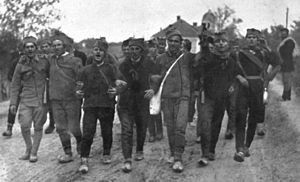 Rado ide Srbin u vojnike - Serbian recruits singing the song while mobilized into World War I (1914).