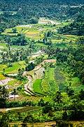 Sesudut pemandangan Sumatera Barat.jpg
