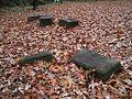 Shady Grove Cemetery Memphis TN 2012-12-09 005.jpg