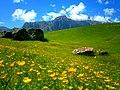 Shahdag, Qusar region, Azerbaijan. 2016-05-26 25.jpg