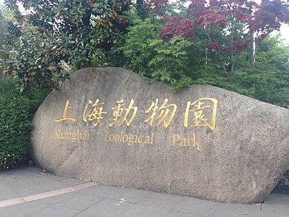如何坐公交去上海动物园 - 景点简介