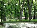 Siary zespół pałacowo-parkowy park nr A-201 (38).JPG