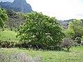 Sierra de los Tajos del Sabar (7232268508).jpg