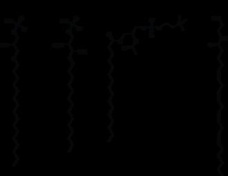 Lipid signaling - Image: Signaling lipids 2