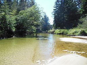 Siltcoos fiume sottostante dam.JPG