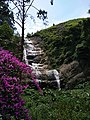 Silver Cascade falls.jpg