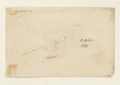 Skissartad bläckteckning föreställande fågel, 1733 - Skoklosters slott - 98074.tif