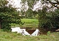 Small pond near Stokepark Wood - geograph.org.uk - 454771.jpg