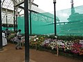 Snap from Lalbagh Flower Show Aug 2013 8159.JPG