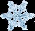 Snowflake11 .png