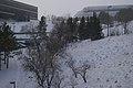 Snowing (3117105624).jpg