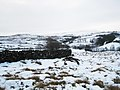 Snowy footpath to Carr House, Westerdale - geograph.org.uk - 1635615.jpg