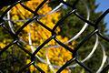 Solar Highway fence material (3029939685).jpg