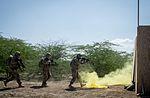 Soldiers train in Djibouti 170110-F-QX786-0356.jpg