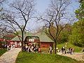 Sopron Bob Palya - panoramio.jpg