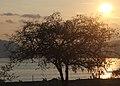 Sore di Larantuka.jpg