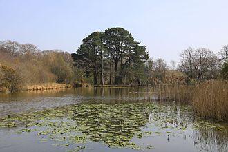 Southampton Common - Southampton Common ornamental lake
