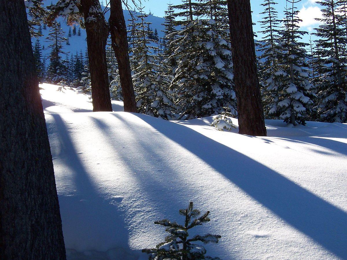Sparkling-snow.fairytale.jpg