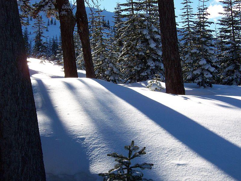 File:Sparkling-snow.fairytale.jpg