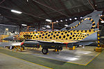 Spotty at the South African Air Force Museum (1).jpg