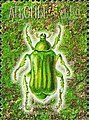 Stamp of Abkhazia - 2000 - Colnect 1004729 - Cetonia aurata.jpeg