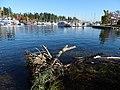 Stanley Park (Inner Harbor) Scene - Vancouver - BC - Canada - 02 (24146183898) (2).jpg