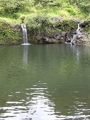 Stream pool - A stream pool in Maui.