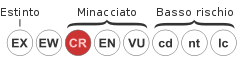 Status iucn2.3 CR it.svg