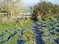 Stile overlooking Cow Bottom - geograph.org.uk - 1107211.jpg