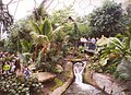 Stream inside the tropical biome , Eden Project, St Blaise CP - geograph.org.uk - 655358.jpg