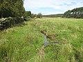 Stream near Stanley Cottages - geograph.org.uk - 960055.jpg