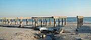 Stripped boardwalk RB Sandy jeh
