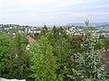 Stuttgart LenzhaldeMai04.JPG
