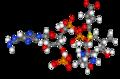 Succinyl-CoA 3D model.png
