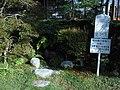 Suikinkutsu at Seikei Park.jpg