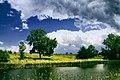 Summer (149946667).jpeg