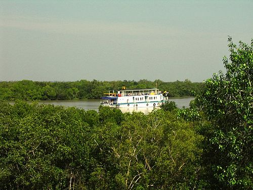 The Sunderbans bordering the Bay of Bengal is the largest single block of tidal halophytic mangrove forest in the world. Sundarbans 09.jpg