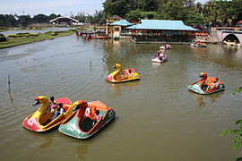 Swan Pedaloes at TMII