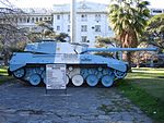 TAM in argentinian flag camouflage.jpg