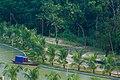 TMSS Lake, Bogra.jpg