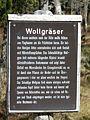 Tafel Hinterzartener Moor 1130114 Wollgräser.jpg