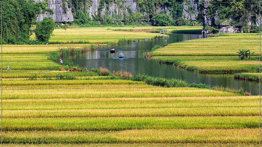Rivière et rizières à Tam Cốc au Vietnam - Photo de Tuan Mai