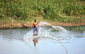 Tank fishing near Unnichai, Batticaloa.JPG