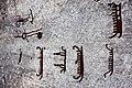 Tanum 1 vitlycke ID 10160600010001 IMG 8510.JPG