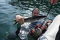 Tarpon fishing.jpg