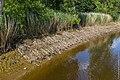 Technisch-biologische Ufersicherung an der Wümme, Versuchsstrecke 2 (50678706976).jpg
