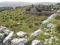 Tel-Beyt-Shemesh-9774.jpg