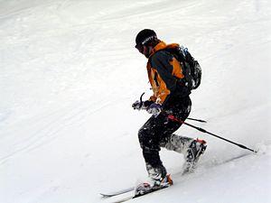 Mount Stirling - Image: Telemark skier mt stirling 1